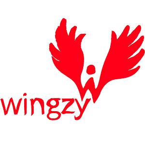 logo Wingzy